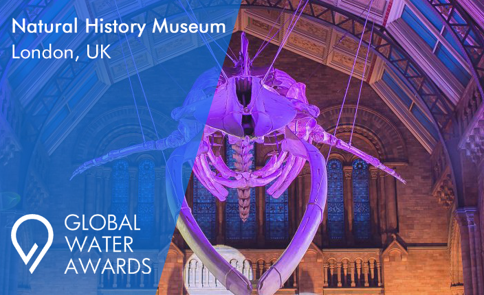 whale museum for awards page